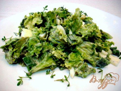 Салат из листового салата