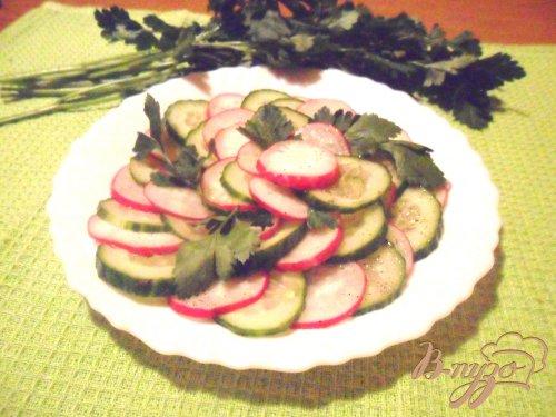 Салат из редиса и огурцов под восточной заправкой