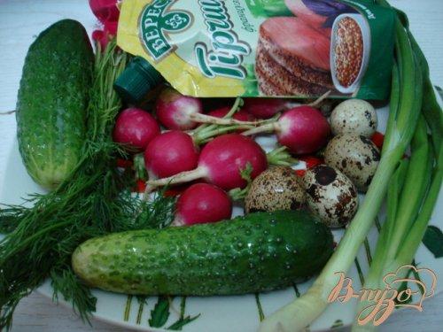 Салат из редиса, огурцов и перепелиных яиц