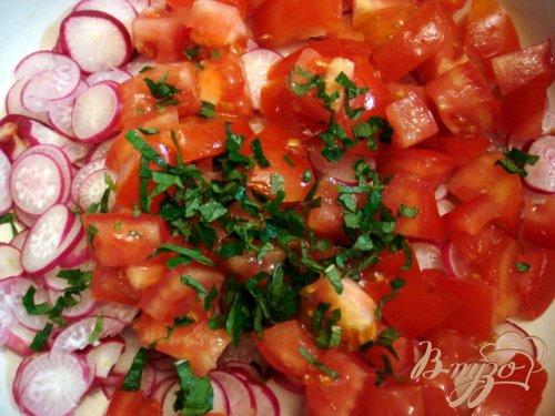 Салат из редиса, помидоров и мяты