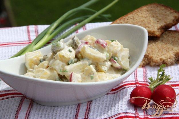 фото рецепта: Немецкий картофельный салат с редисом и маринованными огурчиками