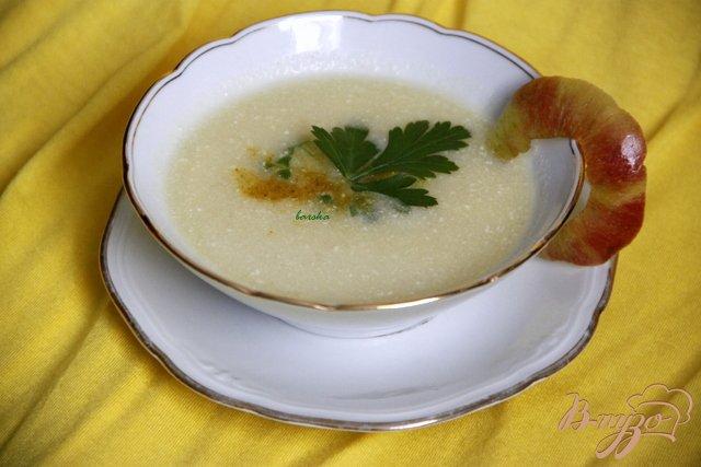 Фото приготовление рецепта: Куриный суп с яблоками и карри шаг №8