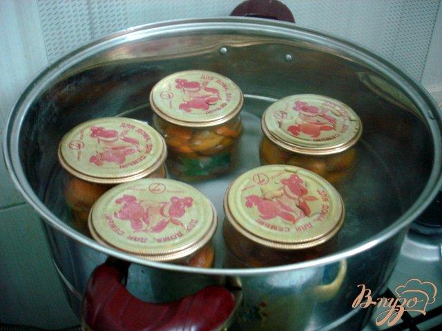 Фото приготовление рецепта: Абрикосы в собственном соку шаг №5