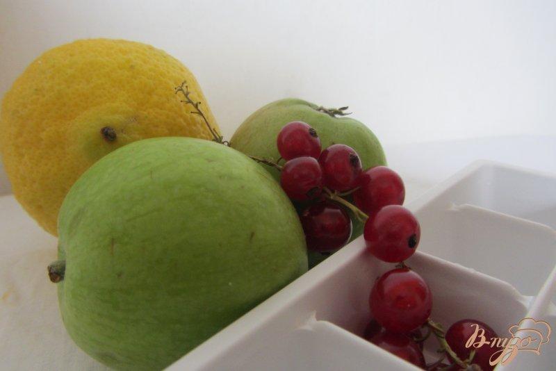 Фото приготовление рецепта: Коктельные ледяные кубики шаг №1