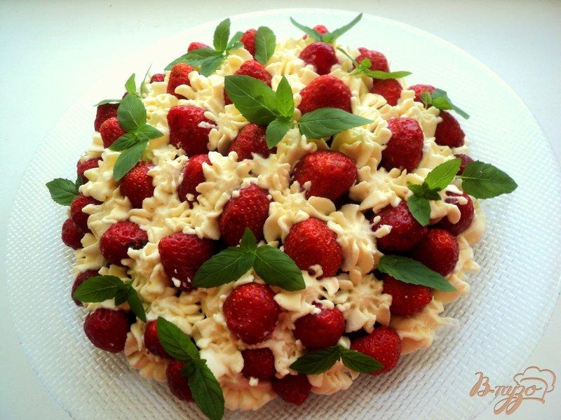 торты с фруктами и шоколадом рецепты с фото