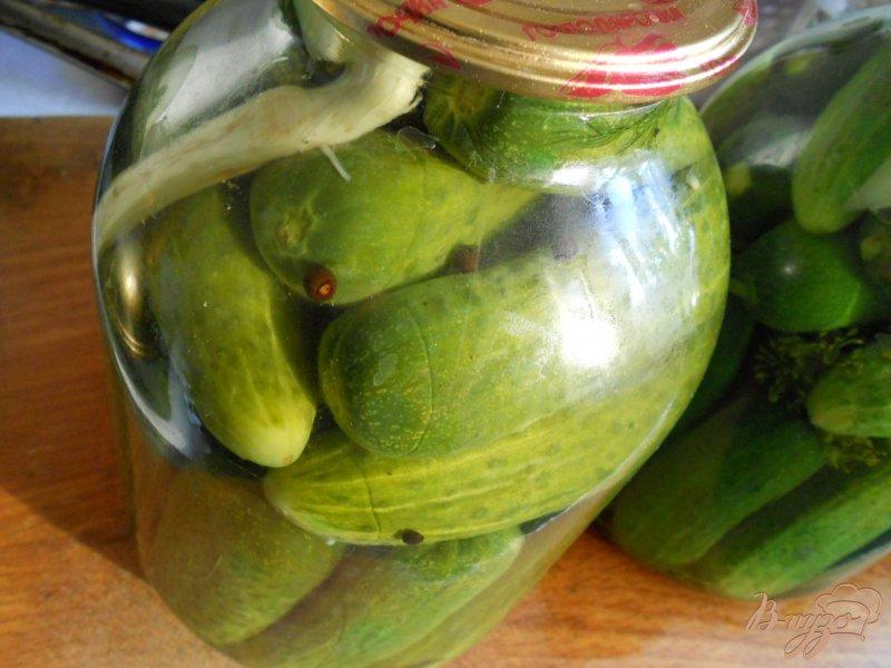 Фото приготовление рецепта: Огурцы маринованные на зиму шаг №4
