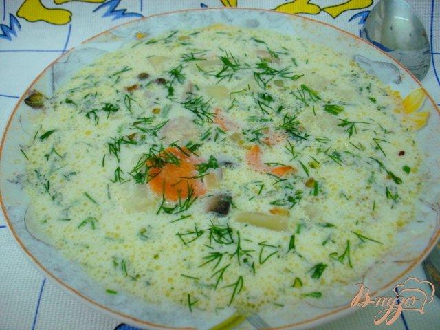 Фото приготовление рецепта: Грибной суп со сметаной шаг №9