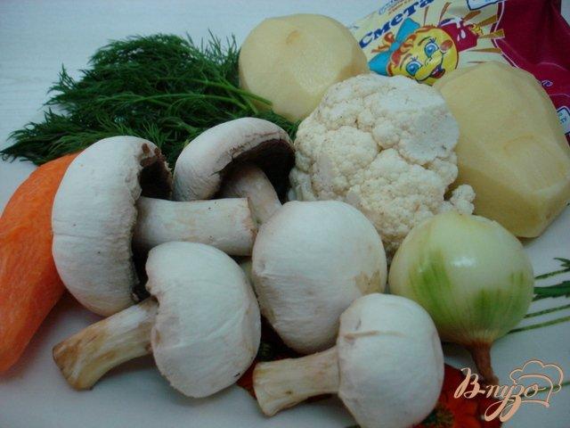 Фото приготовление рецепта: Грибной суп со сметаной шаг №1
