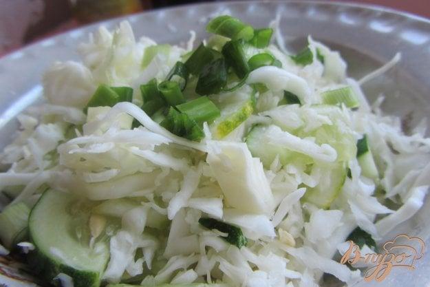 Рецепт салата со свежей капустой и огурцом