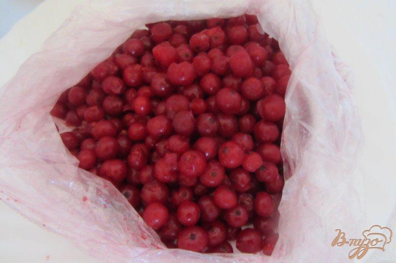 Фото приготовление рецепта: Замороженная красная смородина шаг №6
