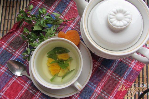 Рецепт Мятный чай с курагой