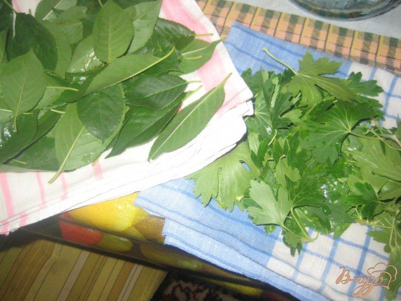 Фото приготовление рецепта: Огурцы консервированные шаг №2