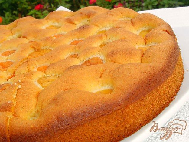 Рецепт Бисквитный пирог с медом и абрикосами