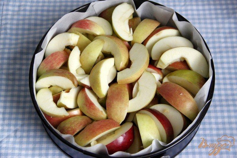 Фото приготовление рецепта: Яблочный пирог  от  Т. Л. Толстой шаг №2