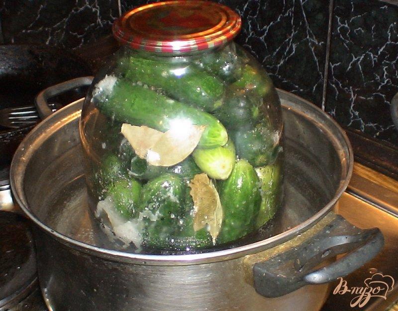Фото приготовление рецепта: Огурчики маринованные шаг №4