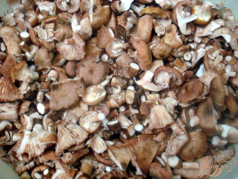 Фото приготовление рецепта: Заморозка грибов на зиму шаг №1