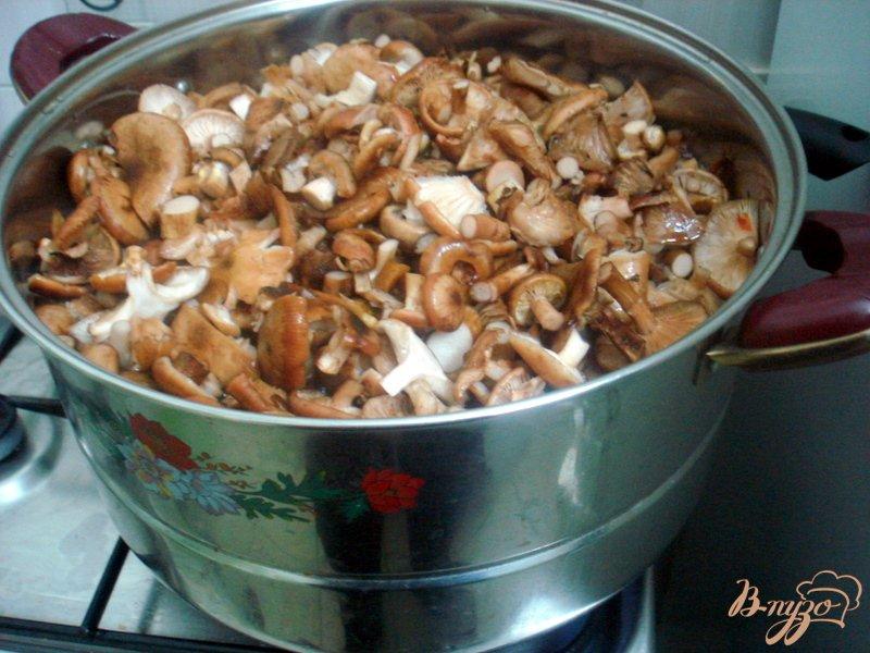 Фото приготовление рецепта: Заморозка грибов на зиму шаг №3