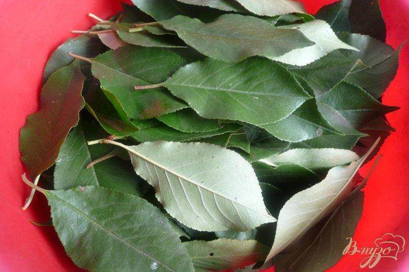 Фото приготовление рецепта: Сироп из черноплодной рябины на зиму шаг №2