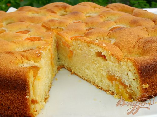 Бисквитный пирог с медом и абрикосами