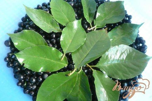 Сироп из черноплодной рябины на зиму