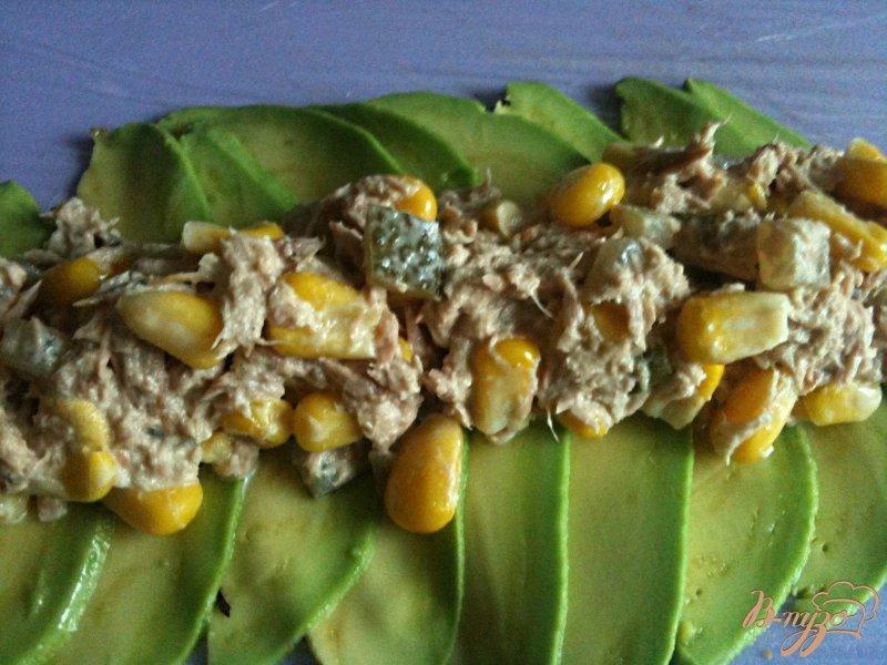 Фото приготовление рецепта: Рулетики из авокадо с салатом из тунца шаг №3