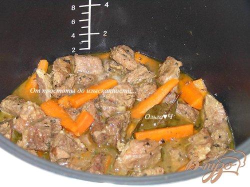 Рагу из говядины с морковью и мятой (в мультиварке)