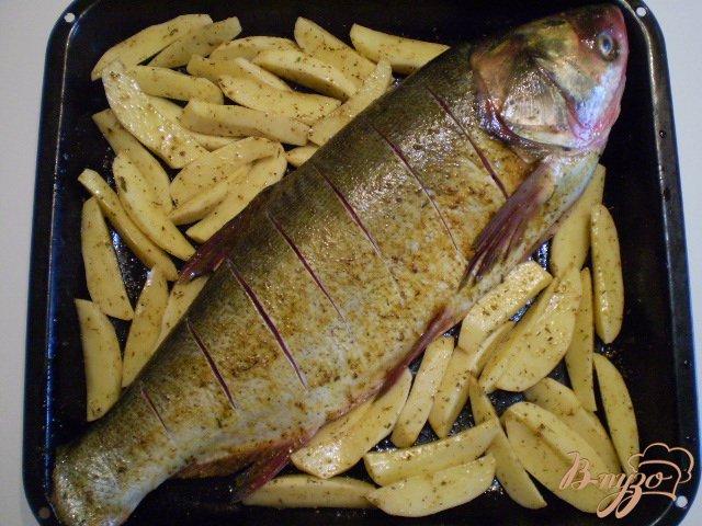 Фото приготовление рецепта: Рыба с овощами в духовке шаг №2