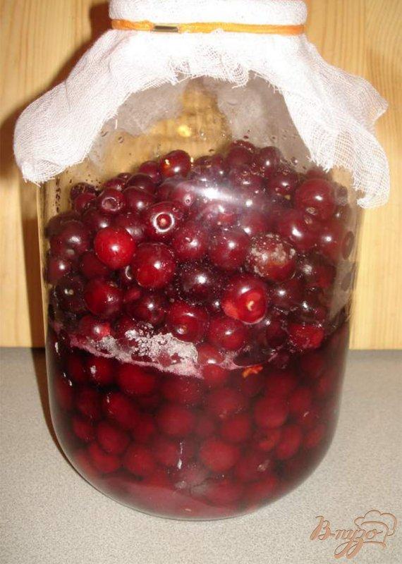 наливка из смородины в домашних условиях рецепт на водке