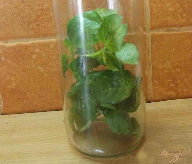 Фото приготовление рецепта: Освежающий мятный напиток шаг №2