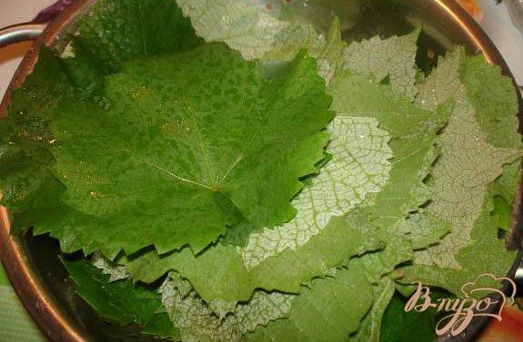 Фото приготовление рецепта: Заготовка на зиму листьев для долмы шаг №1