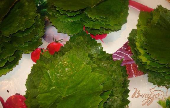Фото приготовление рецепта: Заготовка на зиму листьев для долмы шаг №3