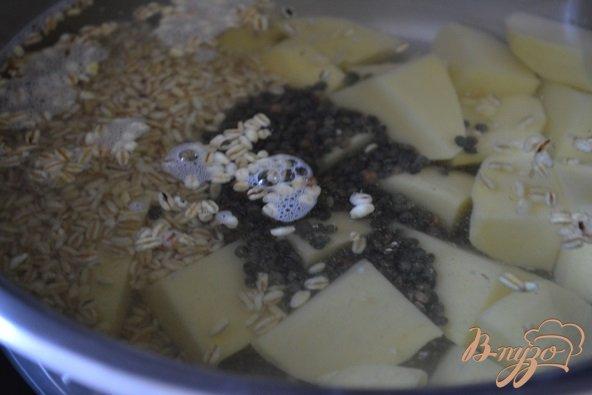 Фото приготовление рецепта: Густой суп с рыбой, крупами и фасолью шаг №1