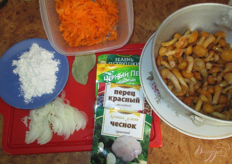 Фото приготовление рецепта: Грибная подлива шаг №1