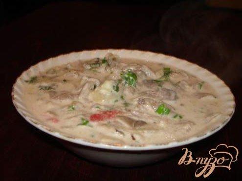 Рецепт Грибы (Вешенка) в сметанном соусе с 3 видами лука