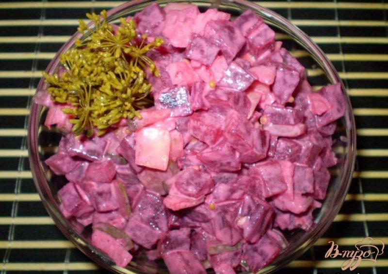 Фото приготовление рецепта: Салат свекольный с хреном, огурцом и горчицей шаг №4