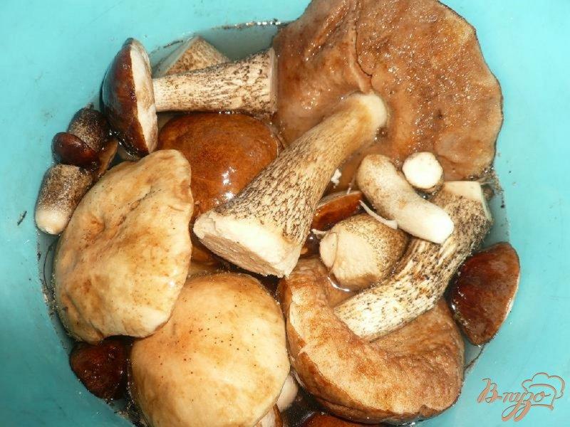 Фото приготовление рецепта: Суп-пюре из грибов и картофеля шаг №1