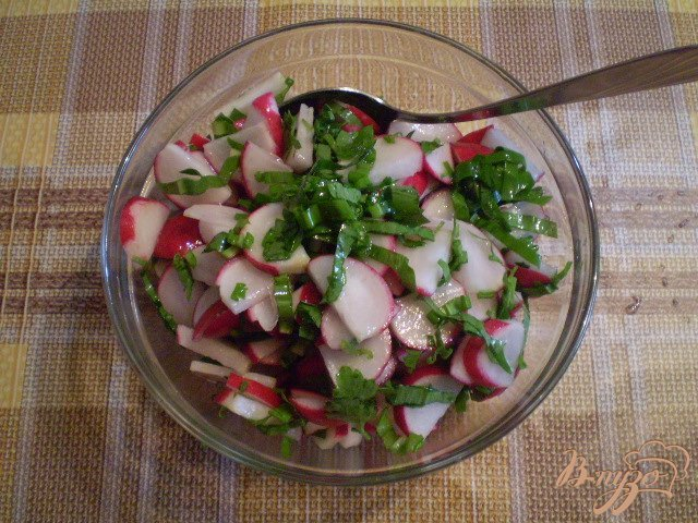 Фото приготовление рецепта: Салат из редиса с петрушкой и черемшой шаг №4