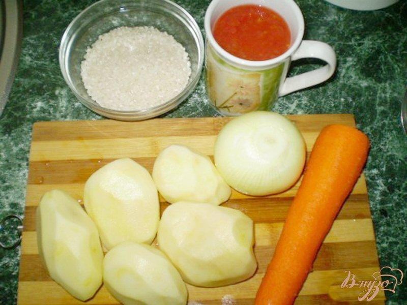 Фото приготовление рецепта: Томатный суп с рисом шаг №1