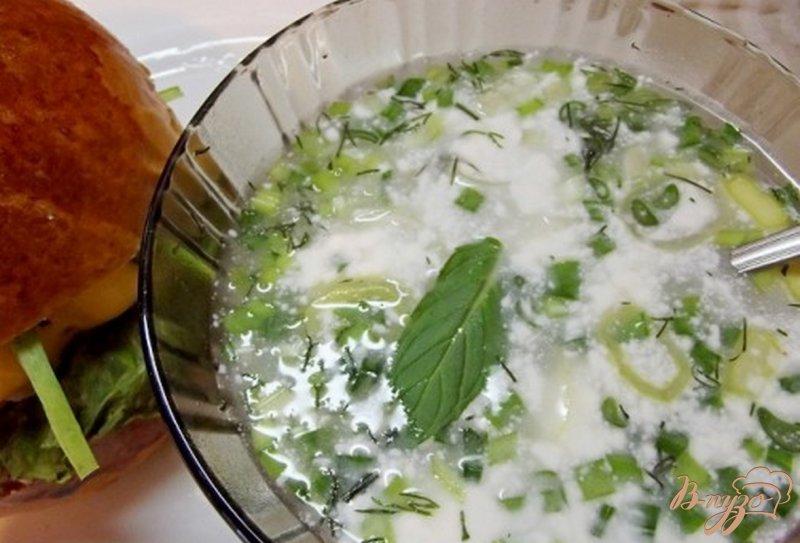 Фото приготовление рецепта: Горячий бульон с луком порей шаг №6