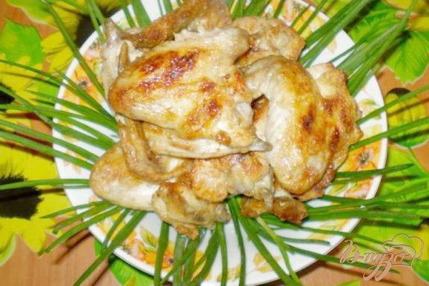 Рецепт Шашлык куриный на кефире с чесноком