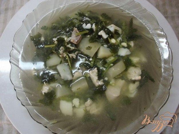Рецепт Зеленый борщ с крапивой