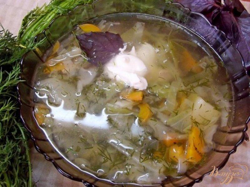Фото приготовление рецепта: Суп из молодых овощей шаг №6