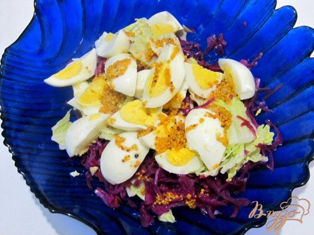 фото рецепта: Салат из пекинской и краснокочанной капусты