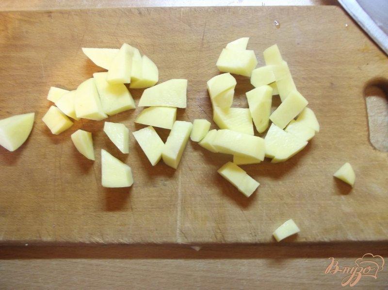 Фото приготовление рецепта: Суп с белыми грибами и овощами шаг №2