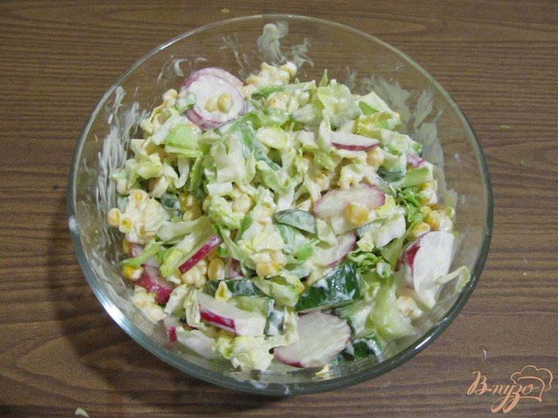 Фото приготовление рецепта: Салат весенний шаг №4