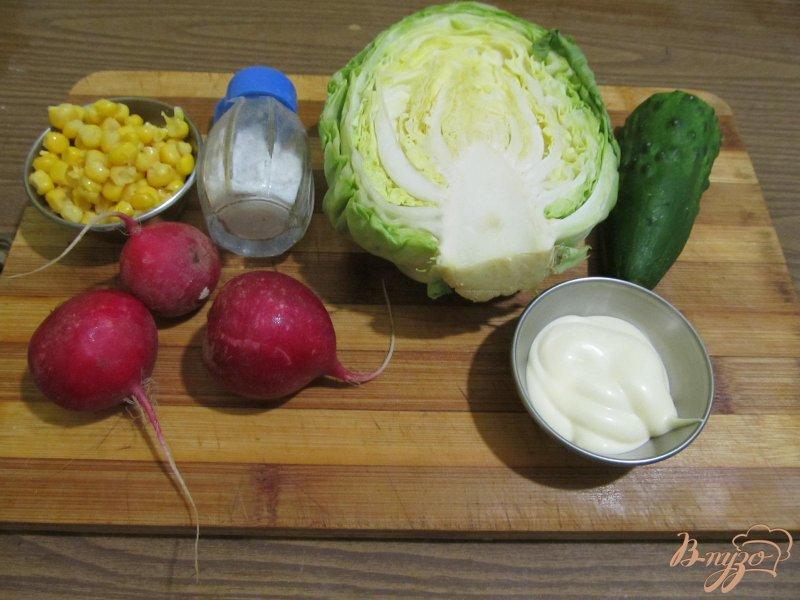 Фото приготовление рецепта: Салат весенний шаг №1