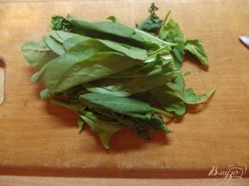 Фото приготовление рецепта: Суп куриный с щавлем шаг №1