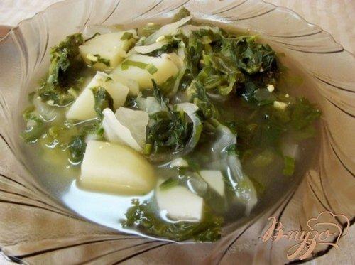 Зеленый суп из листьев салата