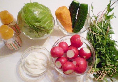 Редисковый салат с капустой и листьями одуванчика
