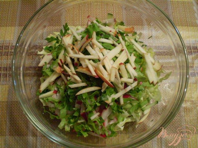 Фото приготовление рецепта: Овощной салат с яблоком и майонезом шаг №6